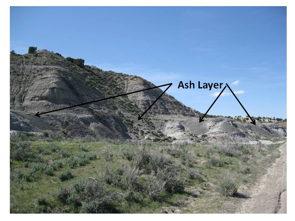 Picture Big Cedar Ridge Late Cretaceous fossil ash layer
