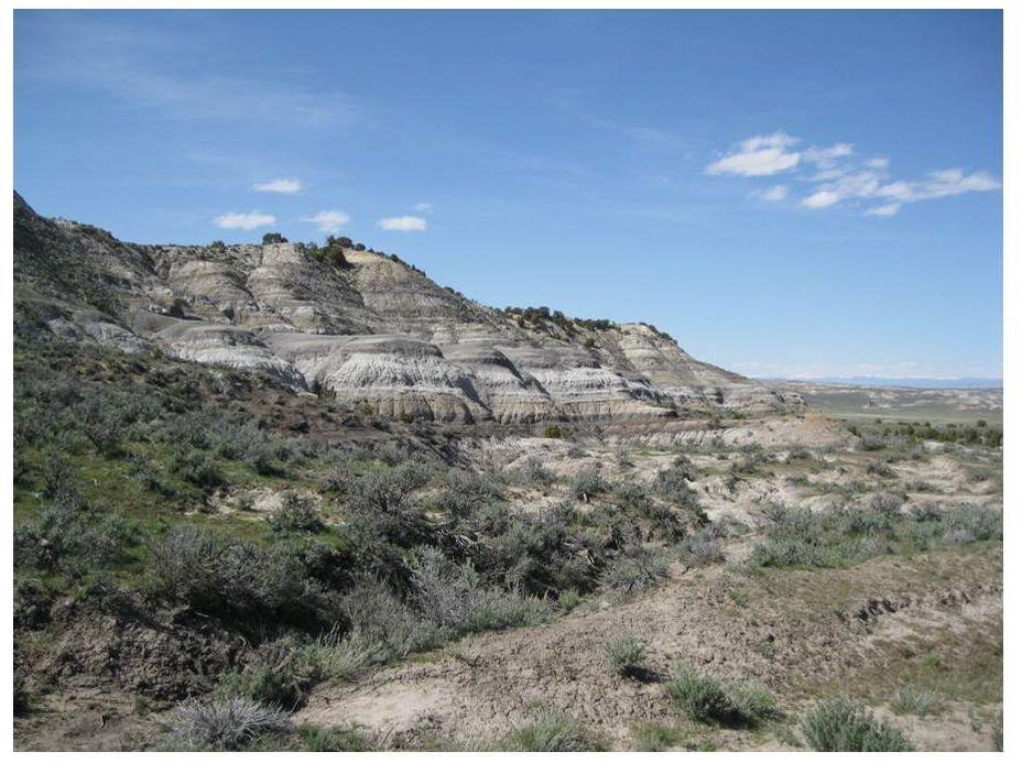 Picture Big Cedar Ridge Meeteetse Formation