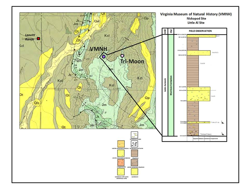 Geologic map and stratigraphic column of VMNH quarry, Big Horn County, Wyoming