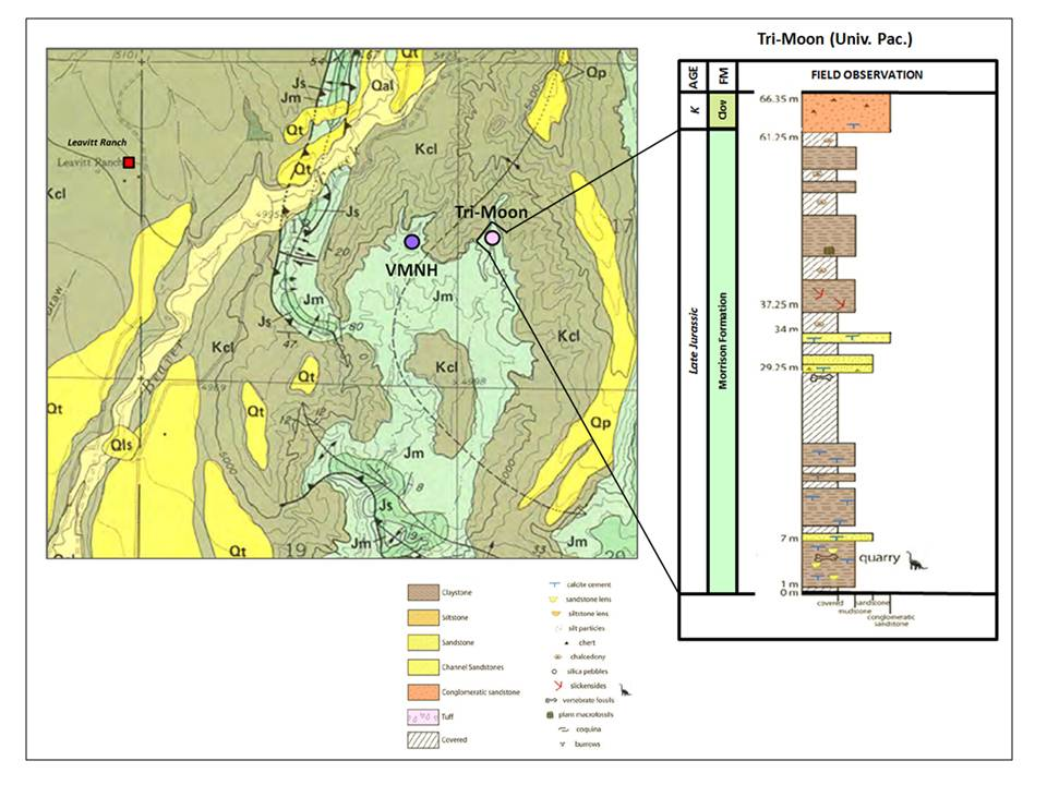 Geologic map and stratigraphic column of Tri-Moon Quarry, Big Horn County, Wyoming