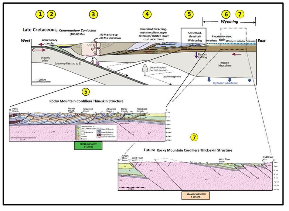 Tectonic cross section of Late Cretaceous lithosphere Western North America