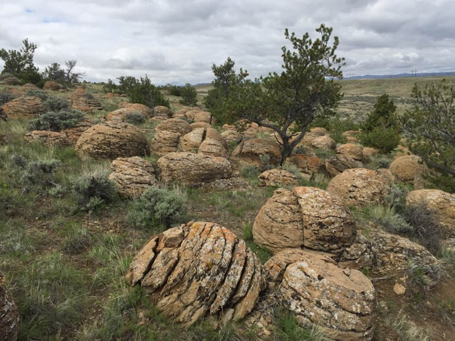 Picture of large concretions at Dinosaur Marbles, Hot Springs County, Wyoming