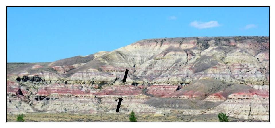Picture Paleocene Eocene thermal maximum rocks at Polecat Bench, Park County, Wyoming