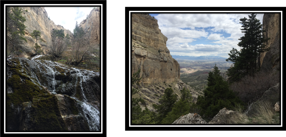 Pictures of spring and canyon at Upper Layout Creek, Bighorn Canyon National Recreation Area, Wyoming