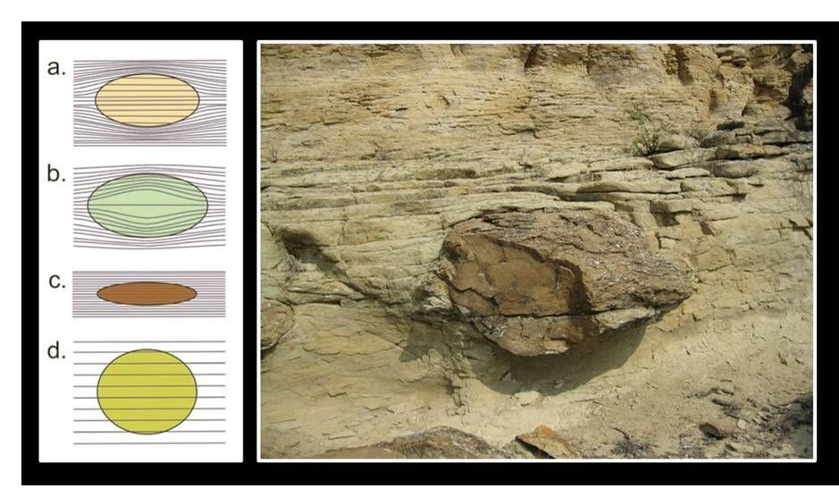 Diagram of concretion growth timing and picture of concretion in Frontier Sandstone, Wyoming