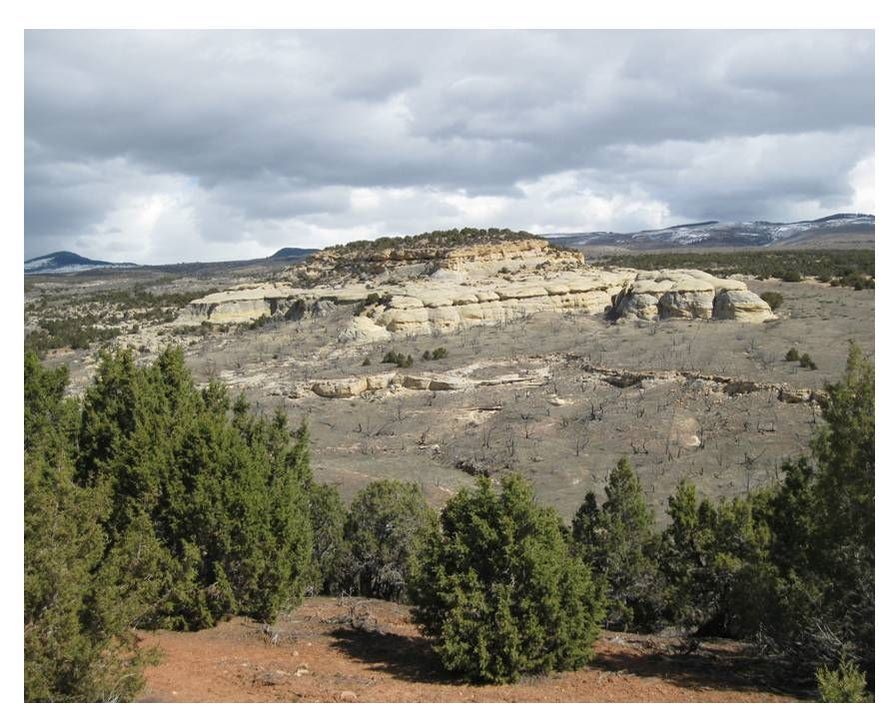 Picture of Tensleep Sandstone dune complex, Big Horn County, Wyoming