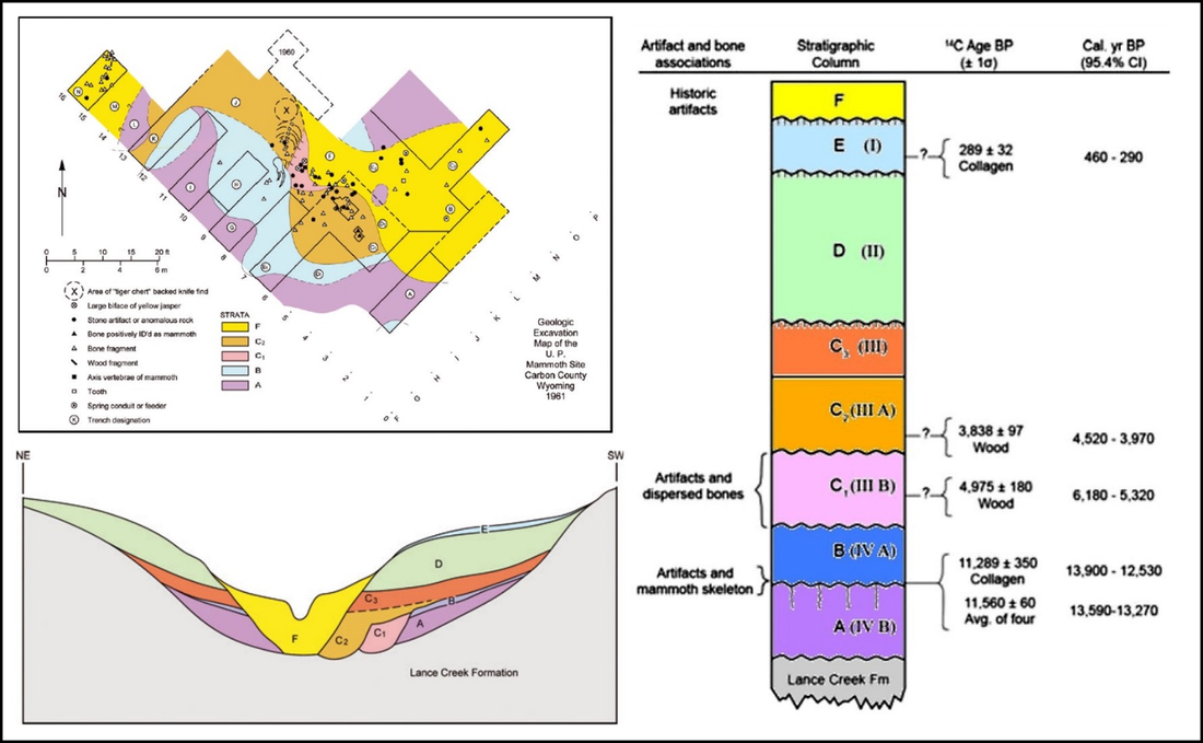 U.P. Mammoth site geologic excavation map, Chicken Springs Valley cross section and Holocene stratigraphic column, Wyoming